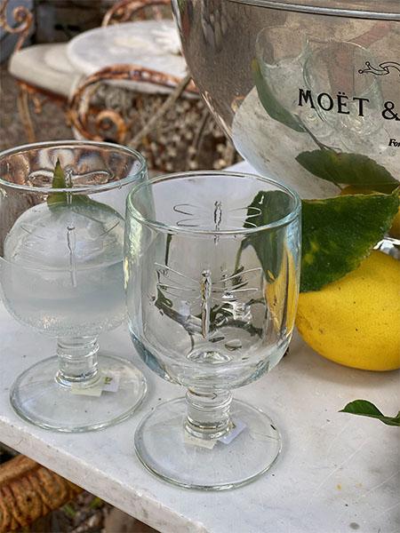 glassdragonfly.jpg