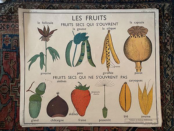 posterLesfruits.jpg