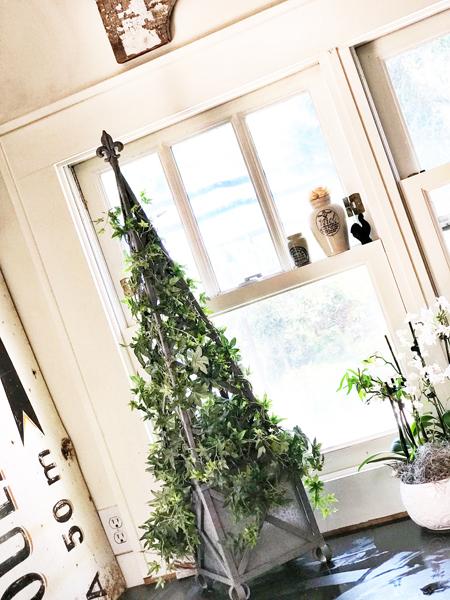 topiary1.jpg